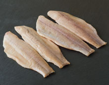 Smoked-Rainbow-Trout-fillets-pack-2-fish_final